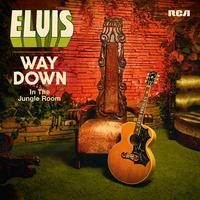 Way Down in the Jungle Room | Elvis Presley